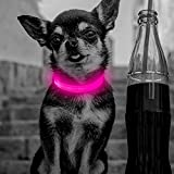 Clan_X Led Dog Collar, USB Rechargeable lighted Collar for Small Dogs, Glow in Dark, Reflective Collars Keep Your Pets Visible & Safe (Pink)