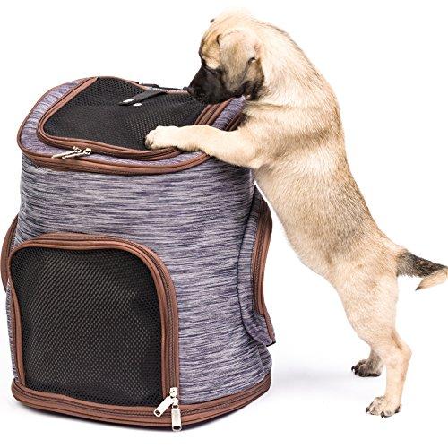 Migosset Haustier-Transporttasche – Robuster Rucksack für Hunde & Katzen – Mit Netzfenster, Öffnung Oben, Hüftgurten…