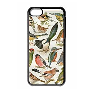 Birds ZLB603796 Brand New Case for Iphone 5C, Iphone 5C Case by icecream design