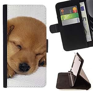 KingStore / Leather Etui en cuir / Sony Xperia Z3 Compact / Cachorro Labrador Retriever Luz del perro de Brown