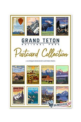 Grand Teton National Park - Postcard Set of 12 Different Original Hand Illustrated Postcards by Lantern Press