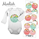 12 Monthly Baby Stickers, Tribal, Flowers, Feathers, Arrows, Pink, Mint, Coral, Baby Book Keepsake, Baby Shower Gift