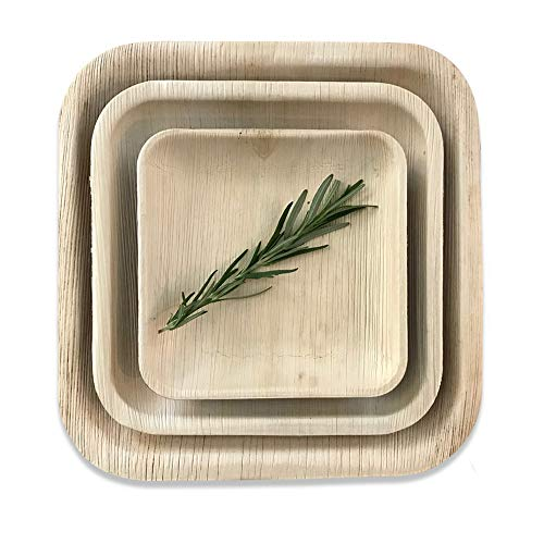 Disposable Palm Leaf Square Dinner Plates by Rustic Earthware | 25 Pack of 10