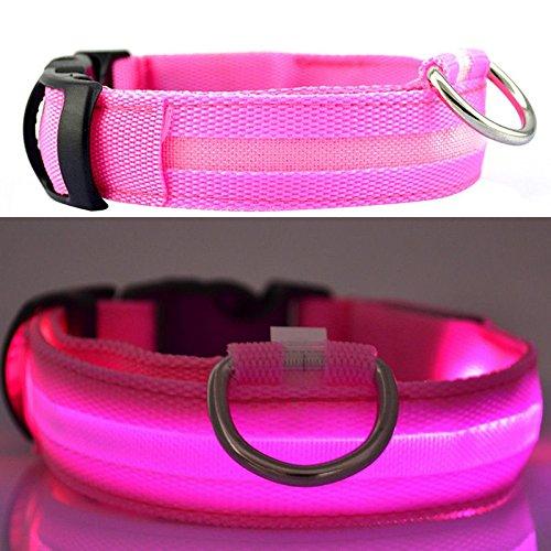 Dante Costumes Dmc (8 Color S M L Size Glow LED Collar Dog Pet Cat Flashing Light Up Nylon Night Safety (L, Pink))