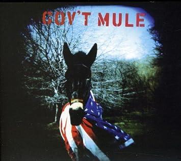 musica mule