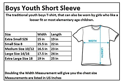 eab5e0c0 Amazon.com: HARRY POTTER Gryffindor School Stripes Boys Kids T-Shirt:  Clothing