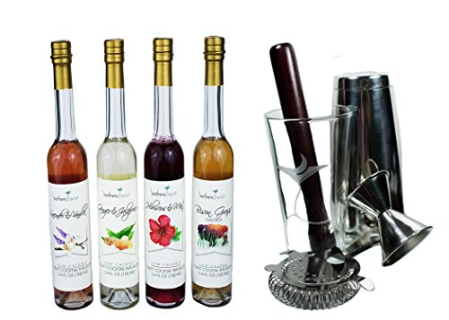 Southern Twist Craft Cocktail Infusions Sampler Deluxe Gift Set inclusing 5-piece Mixology Kit