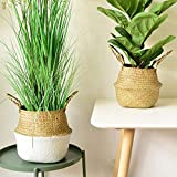 Yesland Seagrass Plant Basket Set of 2, Woven Belly Basket with Handles, Ideal for Storage Plant Pot Basket, Laundry, Picnic, Plant Pot Cover, Beach Bag and Grocery Basket