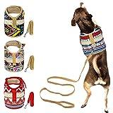 Muttitude Dog Harness & Leash Set for Small Breeds (Medium, Goa)