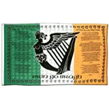 Irland Soldiers Song Flagge, irische Fahne 90 x 150 cm, MaxFlags®