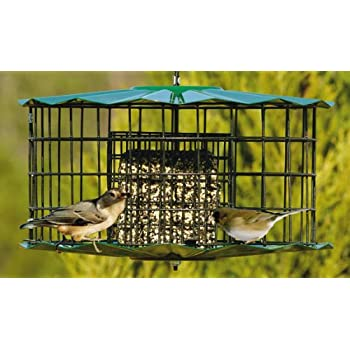 how to make suet cakes for bird feeders