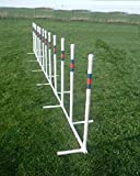 Twelve 3/4'' Training Weave Poles