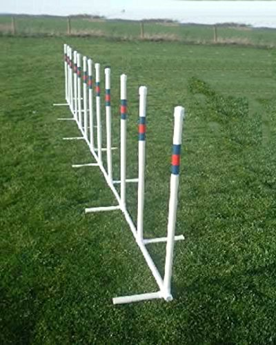 Twelve 3/4'' Training Weave Poles by Agility by Carlson