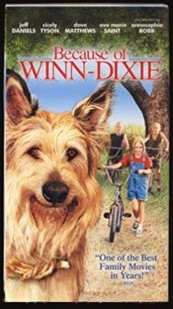 what is the theme in because of winn dixie