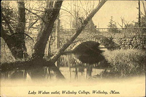 Lake Waban Outlet at Wellesley College Wellesley, Massachusetts Original Vintage - Massachusetts Outlet