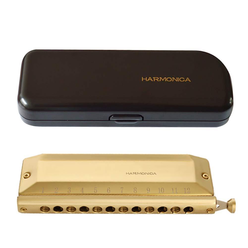 MG.QING Harmonica 12-Hole 48-Tone Chromatic Harmonica Professional Harmonica Wind Instrument,C