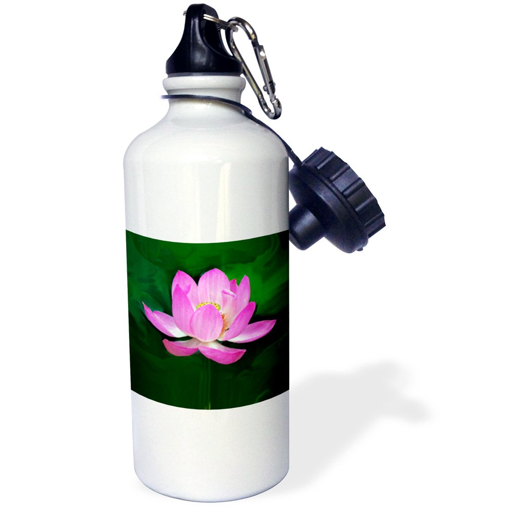 21 oz White 3dRose wb/_1125/_1lotus Sports Water Bottle