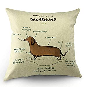 HL HLPPC Anatomy of A Dachshund Throw Pillow Case Cotton Linen Cushion Cover 18 x 18 Inches Standard Square Decorative Pillow Cover for Sofa and Bed One Side Print 1