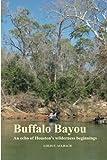 Buffalo Bayou, Louis Aulbach, 1468101994