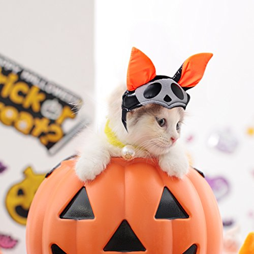 Enjoying Pet Halloween Costume for Cats Bat Pumpkin Pet Halloween Hat for Cat Dogs with Adjustable head band (Cat In A Bat Costume)