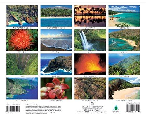 2017 Hawaiian Inspiration 16 Month Wall Calendar