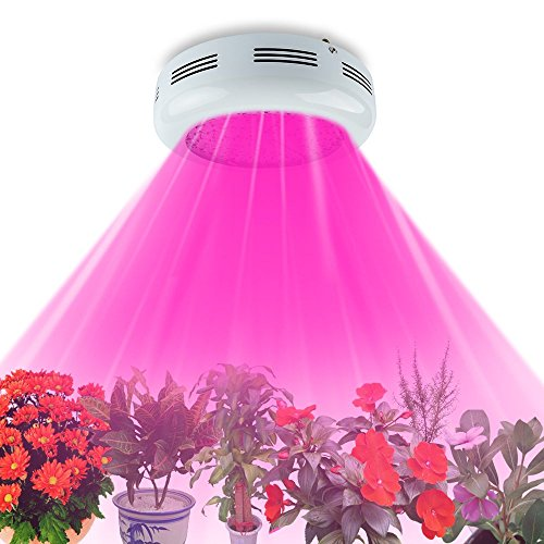 King Plus UFO 600w Double Chips LED Grow Light Full Specturm for Greenhouse and Indoor Plant Flowering Growing (10w Leds)