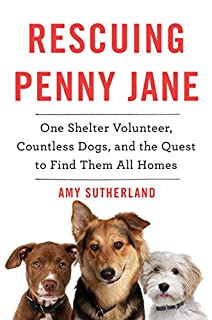 Book Cover: Rescuing Penny Jane: One Shelter Volunteer, Countless Dogs, and the Quest to Find Them All Homes