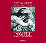 img - for Pompeii: Echoes from the Grand Tour book / textbook / text book