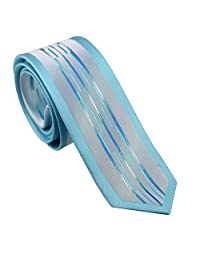 Coachella Ties Silver with Aqua Turquoise Striped Bordered Necktie Woven Skinny Tie