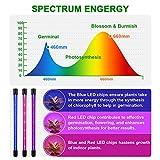 EZORKAS Grow Light, 80W Tri Head Timing 80 LED 9