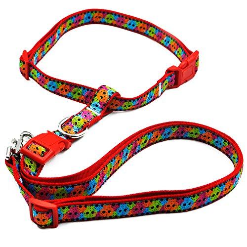 Pet Cuisine 5 feet Reflective,Adjustable Nylon Dog Leash, Walking Training Lead,with Adjustable Waistbelt for Medium/Large Dogs