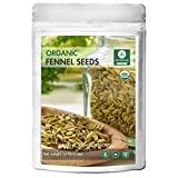 Naturevibe Botanicals Organic Whole Fennel Seeds - 1 lb (16 Ounces) - Foeniculum Vulgare | Raw, Gluten-Free & Non-GMO | Purify Blood | Improves Eye Sight | Combat Bad Breath.