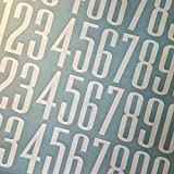 Ultramodern Style Die Cut Vinyl Numbers (4 inch 2 pack, White)