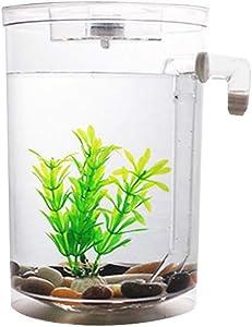 HUCCZ Self-Cleaning Desktop Square/Round Mini Fish Tank with LED Lights and Decorative Plastic Aquatic Plants,Transparent Hydroponic Ecosystem,Creative Home/Office Desktop Aquarium Decorations (A)