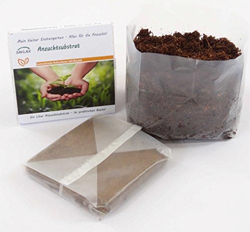 SAFLAX - Anzuchtsubstrat - Kokos in the Bag