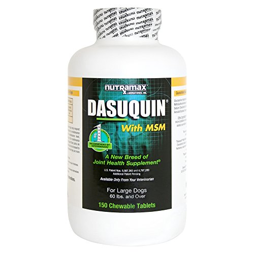 Nutramax Dasuquin Chewables Large Count product image