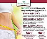 -PREMIUM-100-ULTRA-PURE-Forskolin-Extract-For-Weight-Loss-MAX-STRENGTH-w-40-Standardized-Appetite-Suppressant-Fat-Burner-Supplement-Belly-Buster-Fuel-with-Coleus-Root-Extract-60-Diet-Pills