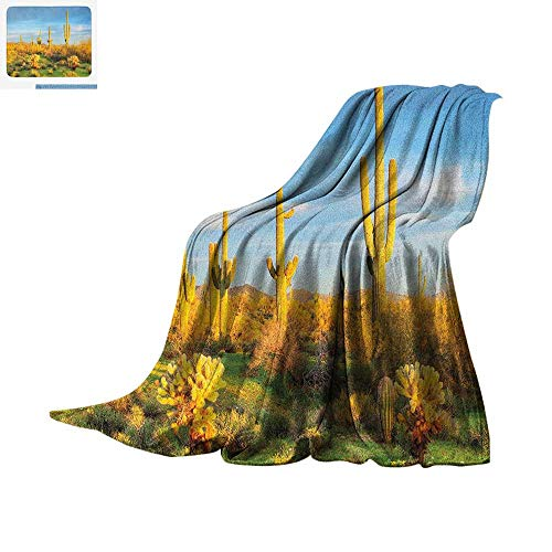 Saguaro Throw Blanket Sun Bath in Sonoran Desert Blooming Cactus Spring Time Vegetation Scenery Warm Microfiber All Season Blanket for Bed or Couch 62