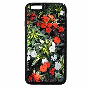 iPhone 6S Plus Case, iPhone 6 Plus Case, Earth laughs in Flowers 22