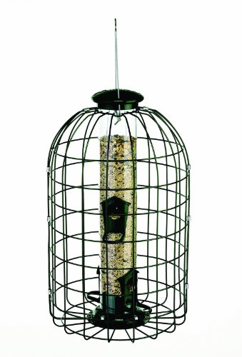 Audubon Squirrel Proof Tube Feeder