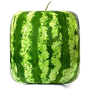 Rare Simple Geometric Square Watermelons Seeds Delicious Fruit Water Melon Seeds