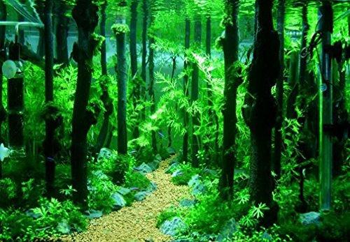 Emours-Reptile-Dcor-Natural-Forest-Branch-Terrarium-Wood-Aquarium-Ornament-4-Pack