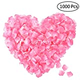 RUIPAY Silk Rose Petals,1000 Pcs Artificial Fake Rose Petals for Romantic Night Wedding Aisle Confetti Valentine's Day Party Anniversary Hotel Floral Decoration (Light Pink & White)