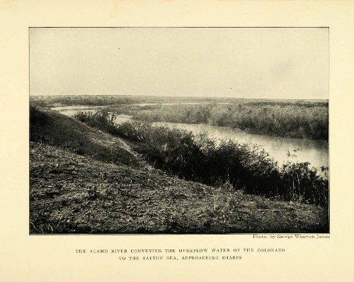 1906 Print Alamo River Landscape Natural History G. Wharton James Photography - Original Halftone Print (Wharton Natural)
