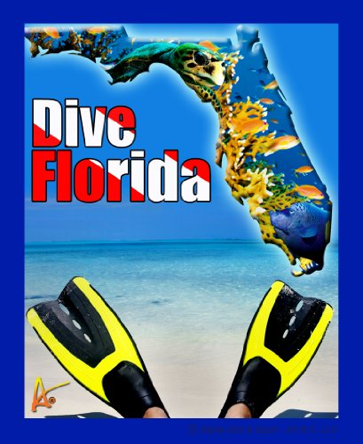 - Best Ultimate Iron-On Florida Fins Dive Travel Collectable Souvenir Patch - Destination Photo Souvenir Postcard Type Quality Photos Graphics - Dive Florida Fins and Reef Scene