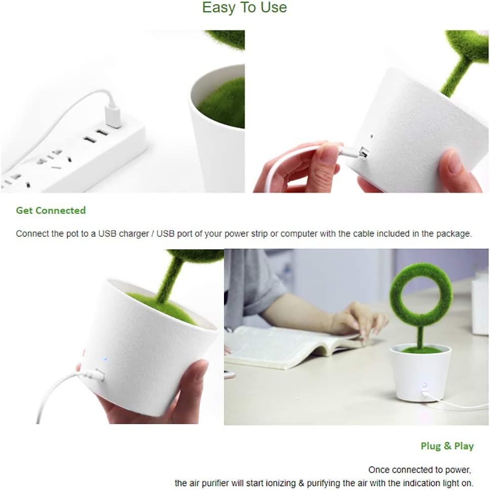 for Home//Office//Dorm//Car MLQ Desktop Evergreen Plant Air Purifier for Removing Airborne Pollutants Negative Ions Releasing Air Cleaner