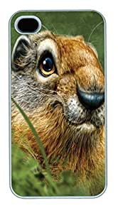 Grey Koala Face PC Silicone For Case Samsung Galaxy S4 I9500 Cover White
