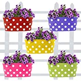 Trust Basket Set Of 5 -Dotted Oval Railing Planter - (Magenta, Purple, Green, Red, Yellow)