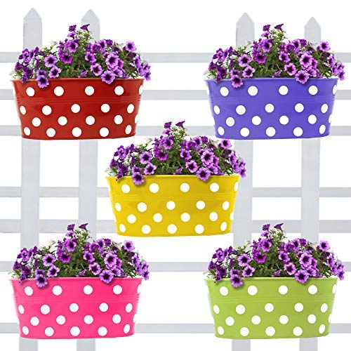 Trust Basket Dotted Oval Railing Planters (Multicolour, Pack of 5) product image