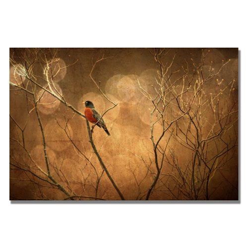 The Robin by Lois Bryan, 30×47-Inch Canvas Wall Art